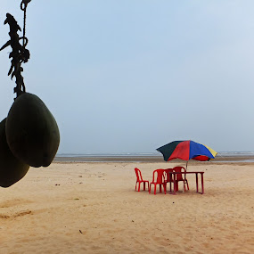 Beach Holiday by Satabdi Datta - Uncategorized All Uncategorized ( holiday, coconut, still life, sea coast, digha, india, travel photography,  )