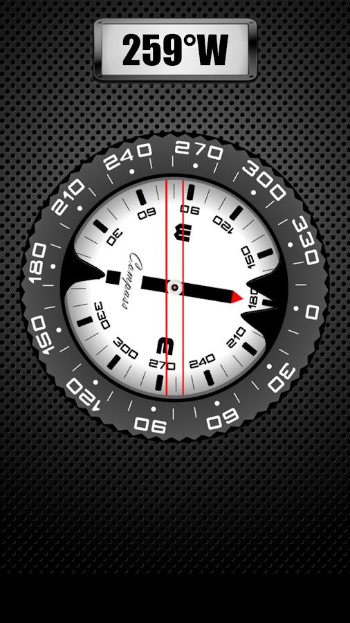 Compass PRO - screenshot