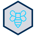 Drive Beehive icon