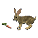 Rabbit Hunt icon
