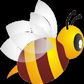 Stray Bee