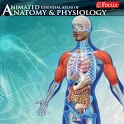 Anatomy & Physiology-Animated icon