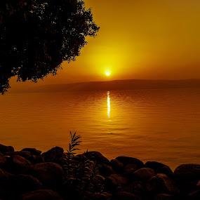 Sunset by the Kinneret! by Ethan Fox Miles - Landscapes Sunsets & Sunrises ( kinneret, relax, landsape, sunset, lake, beach,  )