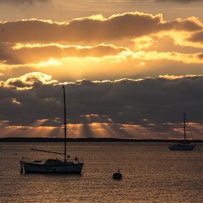 Harbor Sunset by Drew Campbell - Landscapes Sunsets & Sunrises