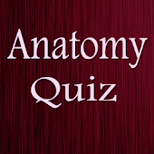 Top Anatomy Quiz