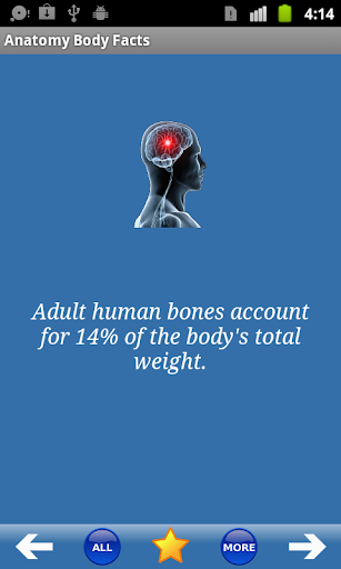 Anatomy Body Facts
