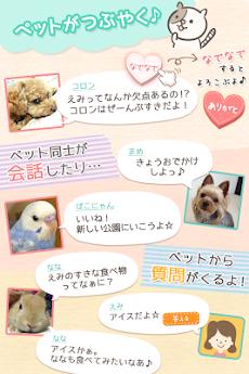 ペット好きコミュニティ ぺとりごと かわいい犬や猫の写真共有のおすすめ画像2