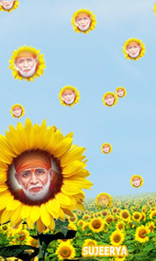 免費下載娛樂APP|SAIBABA in Sunflower Garden app開箱文|APP開箱王