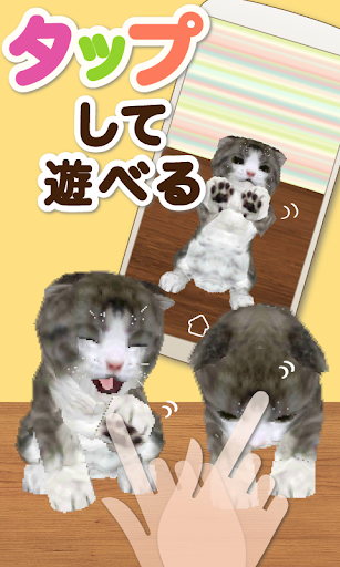 育てるライブ壁紙タップにゃん(小猫育成ゲーム)[無料版]