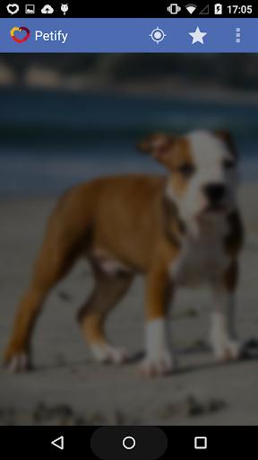 petify - dog diary