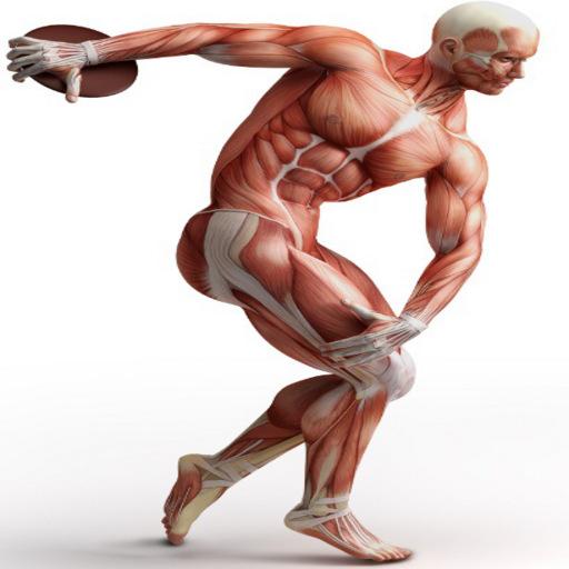 Testes Ortopédicos LOGO-APP點子