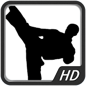 Martial Art - Kung Fu HD WP