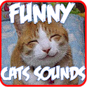 Funny Cats Sounds Ringtones icon