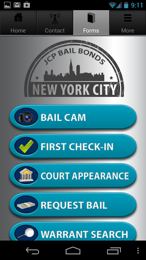 New York Bail- screenshot