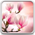 Magnolia Live Wallpaper icon
