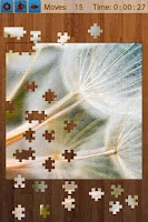 Screenshot of Leaf Jigsaw Puzzles 4 In 1