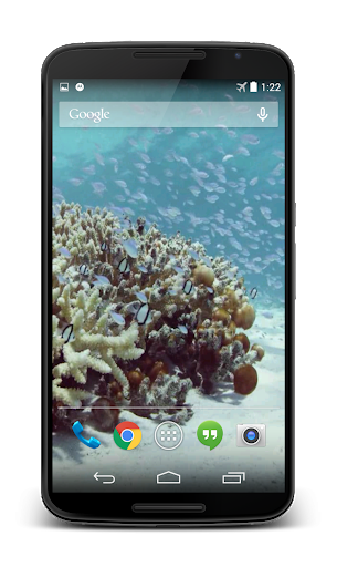Sea Life Video Live Wallpaper