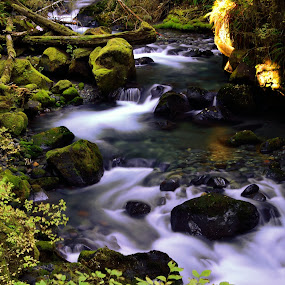 Saxon salmon stream by Todd Ivanhoe - Landscapes Waterscapes
