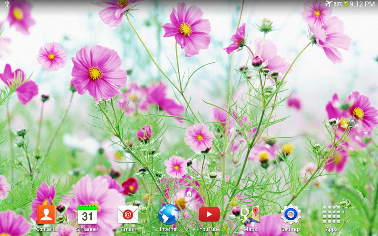 Sweet flowers live wallpaper android apps on google play for Plantes on line