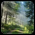 森林动态壁纸 icon