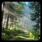Floresta Papel de Parede Vivo icon