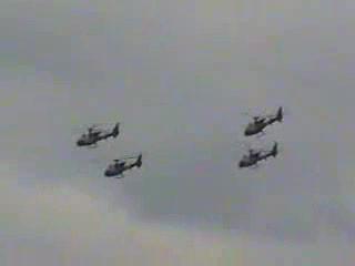 Blue Eagles Shoreham 1998