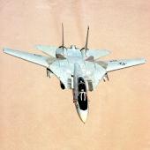 Grumman F-14 Tomcat PRO