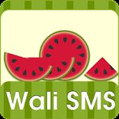 Wali SMS-Fresh summer theme