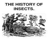 The History of Insects