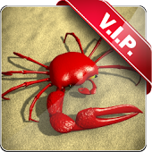 Red Crab live wallpaper