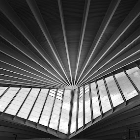 Bilbao airport by Ben Leng - Buildings & Architecture Architectural Detail ( b&w, sigma, black and white, lines, nikon, 10-20mm, bilbao airport )