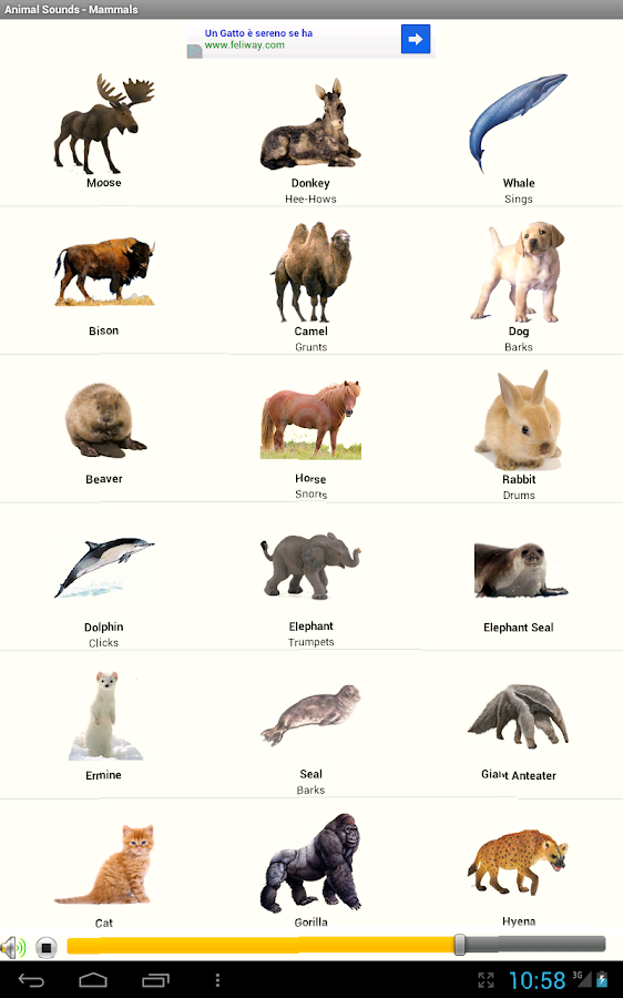 Come fa? i Versi degli Animali- screenshot