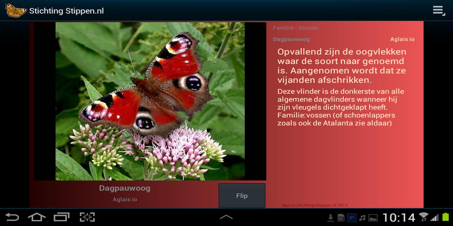 Vlinders in de tuin- screenshot