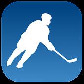 Hockey Statistics