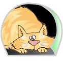 MaxMon remote property monitor icon