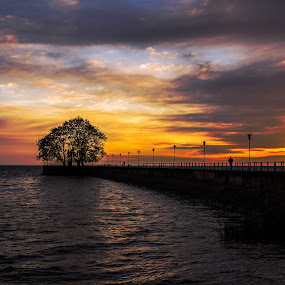 Un'alba a Puerto Olivos by Mariateresa Toledo - Landscapes Sunsets & Sunrises ( argentina, alba, puerto olivos, buenos aires, sunrise )