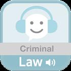 형법 전체 오디오 조문듣기 icon