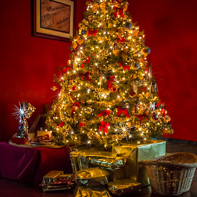 After Christmas Glow  3996  by Karen Celella - Public Holidays Christmas ( holiday, lights, reflection, tree, lighting, christmas, gifts, glow, mood, mood factory, hanukkah, red, green, artifical, colors, Kwanzaa, blue, black, celebrate, tis the season, festive )