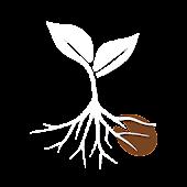 Seed - Controle Financeiro