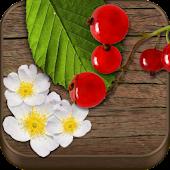 Wild Berries & Herbs PRO