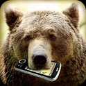 Call tracker bear icon