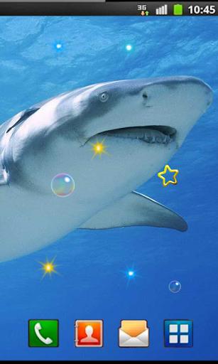 Shark Death Sea LWP