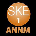 SKE48のオールナイトニッポンR 第1回 icon
