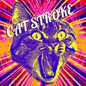 CAT STROKE logo