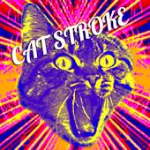 CAT STROKE
