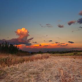 Wheat fields by Gabriele Copez - Landscapes Prairies, Meadows & Fields ( clouds, wheat, field, sunset, landscape )