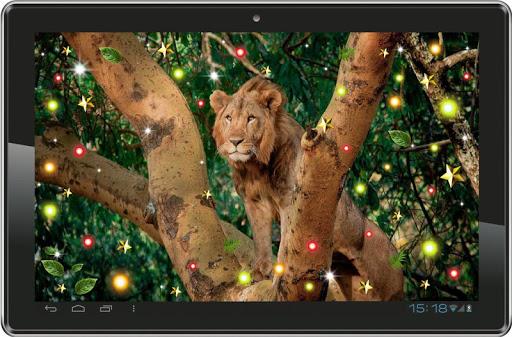 玩免費個人化APP|下載Lions African live wallpaper app不用錢|硬是要APP