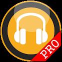 Headset (Earphone)Launcher PRO