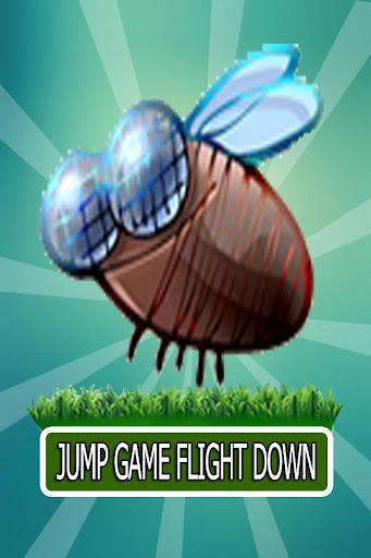 Jump Game Flight Down