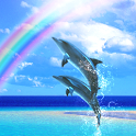 Dolphin Breeze icon